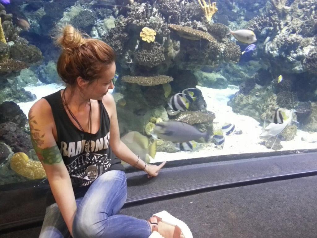 peces normcoregirl aquarium