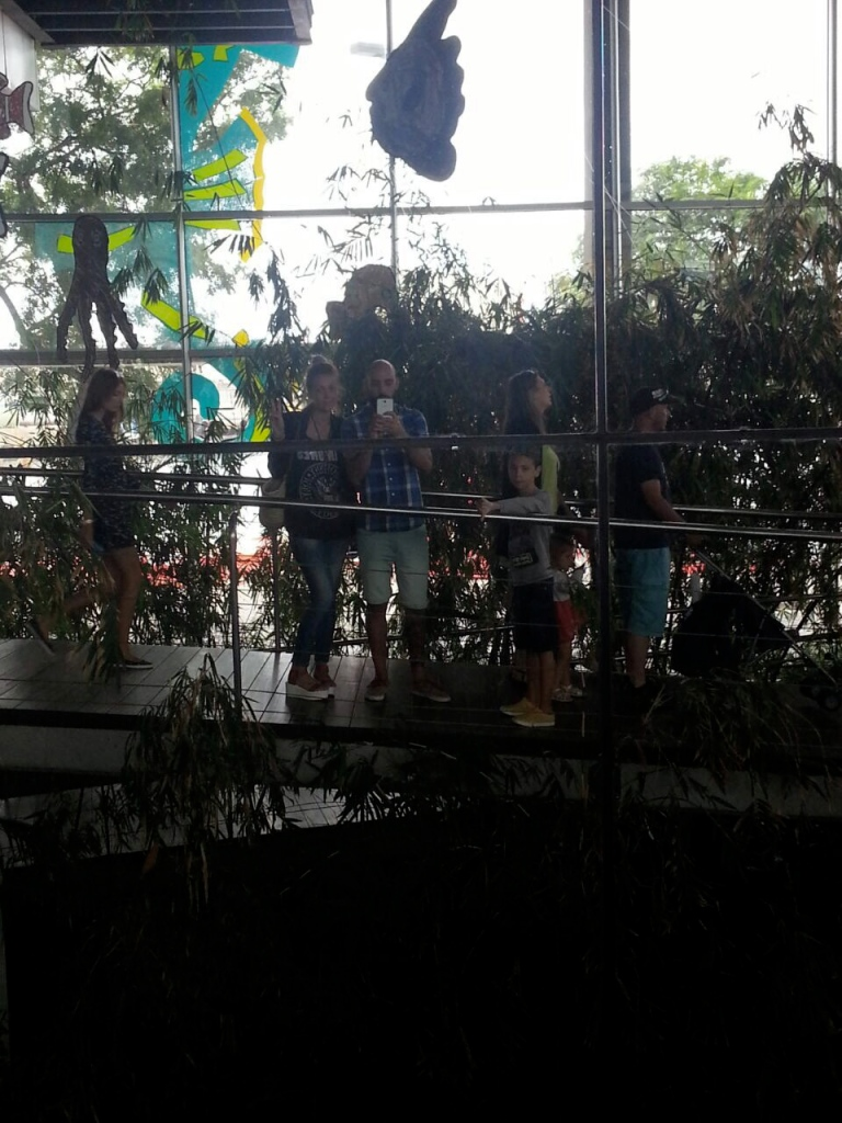 aquarium normcore barcelona